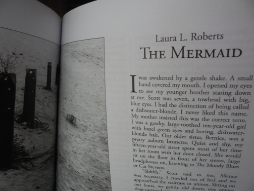 The Mermaid, by Laura L. Roberts